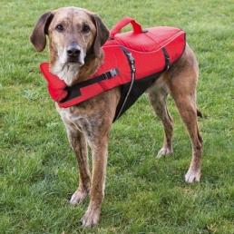 pelastusliivi-koiralle